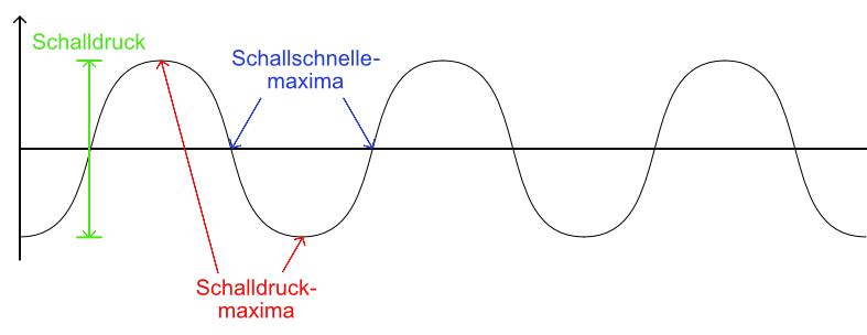 Schalldruck und Schallschnelle an der Darstellung einer Schallwelle verdeutlicht