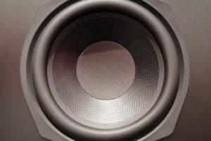 Nahaufnahme eines Lautsprecher-Chassis