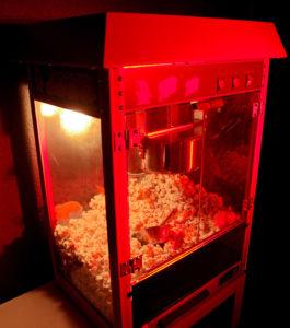 Eine klassische Popcornmaschine gefüllt mit Popcorn.